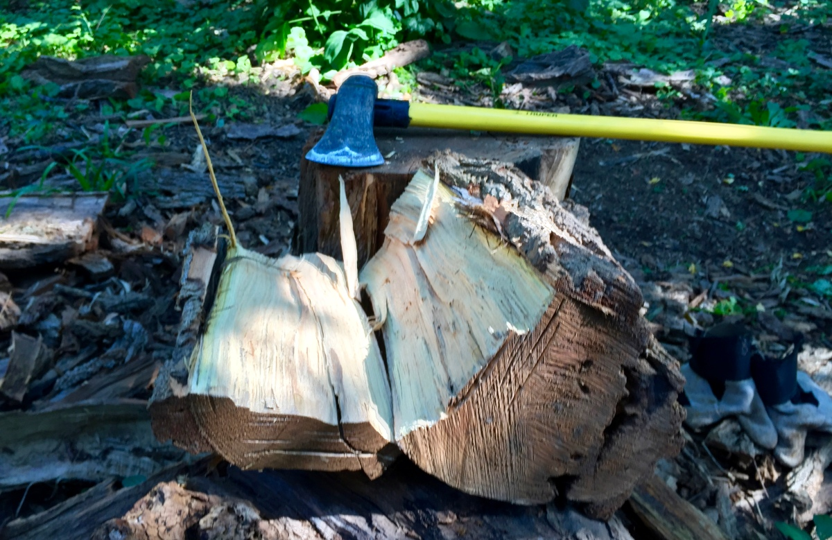 The Splitting Maul & The Black Locust.